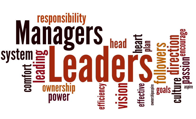 Cose che un Tech Leader può fare ed un Project manager no